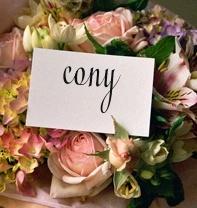 Cony2