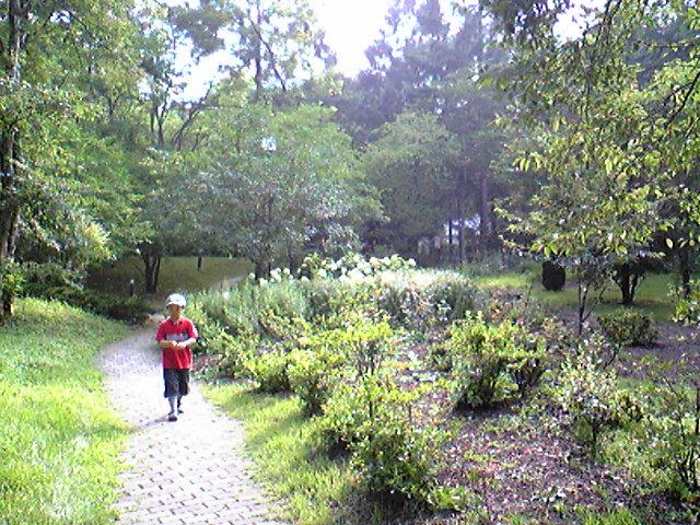 軽井沢絵本の森美術館のお庭